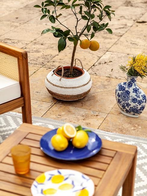 Mediterrane Terrasse Outdoor Pflanzen Zitrone