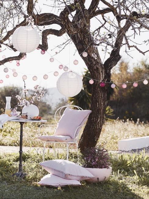 Stühle und Tisch unter einem Baum