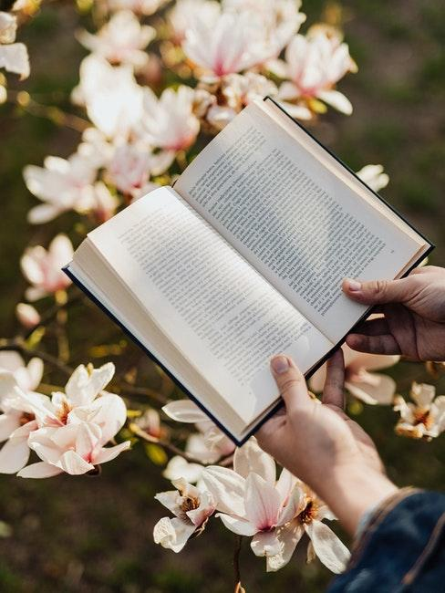 Lesen im blühenden Garten
