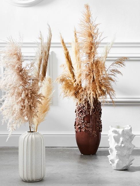Terrakotta Vasen mit Pampasgras