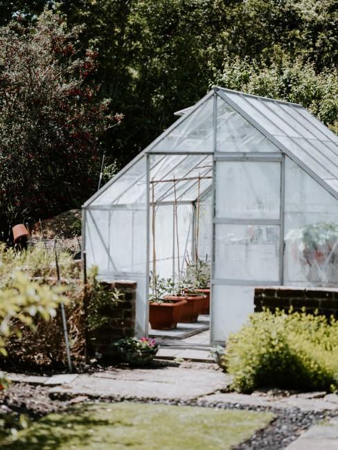 Beim Gemüsegarten anlegen auch ein Gewächshaus einplanen