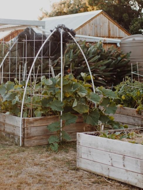 Gemüsegarten anlegen mit Hochbeeten und Gartenhaus