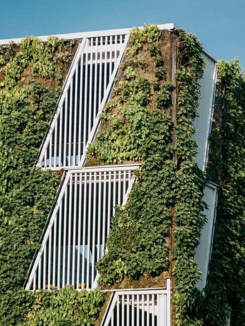 Vertikaler Garten als Häuserfassade