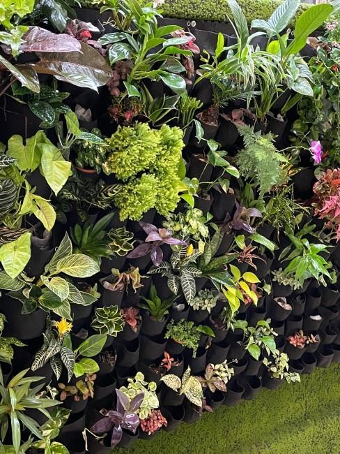 Pflanzenwand mit Grünpflanzen und Blumen