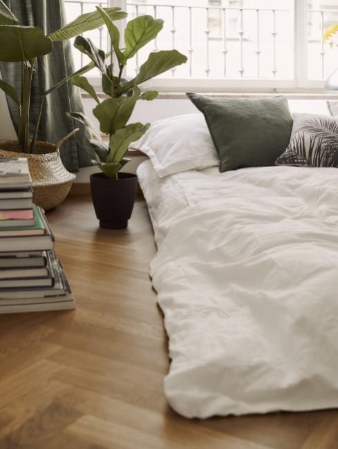 Große Zimmerpflanze im Schlafzimmer