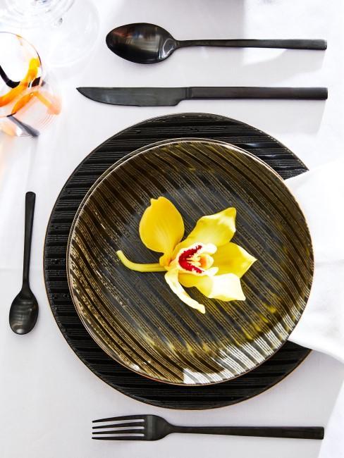 Gelbe Orchideenblüte auf Teller
