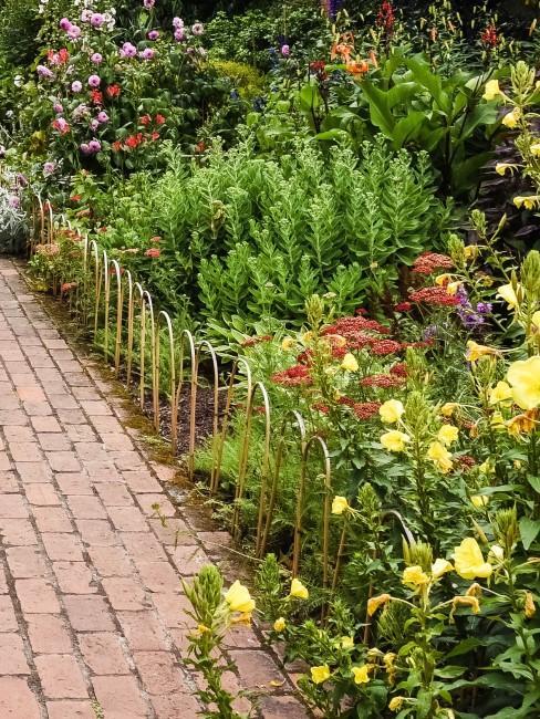 Garten mit gelben Blumen und anderen Blütenfarben