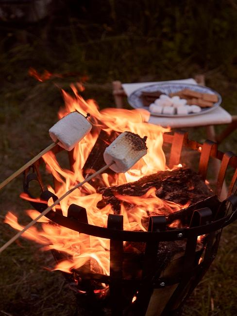 Gegrillte Marshmallows und Feuerschale im Hintergrund