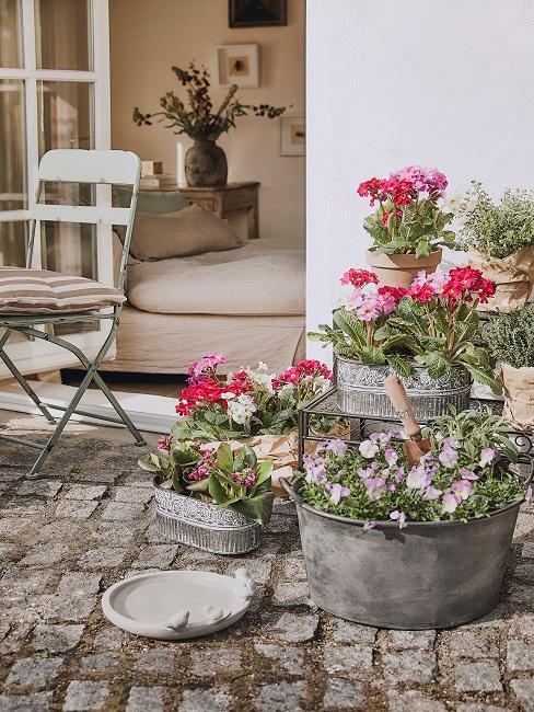 Rosa und pinke Blumen in Metall Blumentöpfen unterschiedlicher Größe