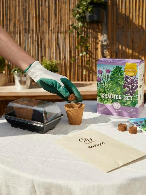 Kräuter Set Paket zum Pflanzen auf Gartentisch