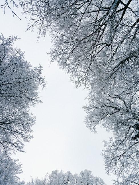 Winterliche Landschaft