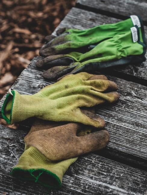 Gartenhandschuhe liegen auf einer Bank