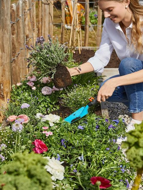 Frau pflanzt Blumen im Garten an