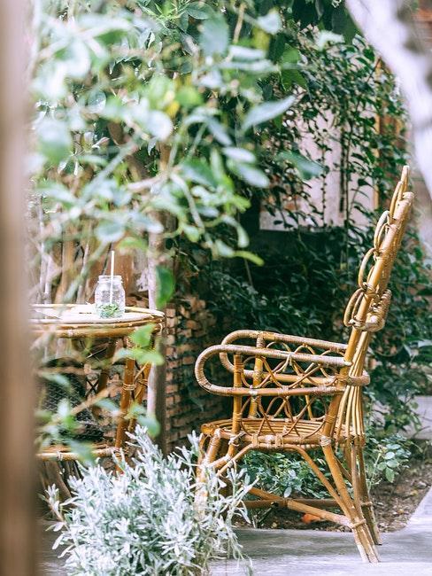 Stuhl steht im Garten hinter dem Haus