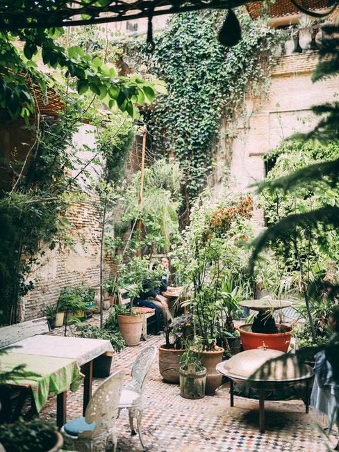 Innenhof gestalten mit vielen Pflanzen