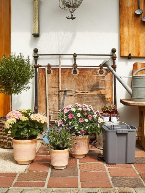Im Garten stehen verschieden große Terracotta Töpfe