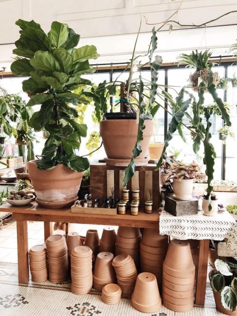 Viele Terracotta Pflanztöpfe