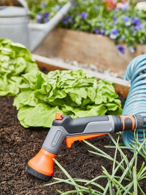 Gemüse im Hochbeet pflanzen