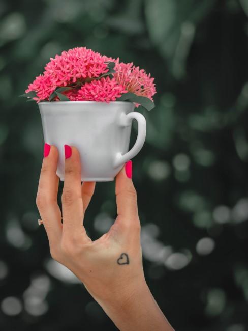 pinke Blumen in Tasse