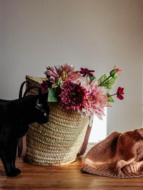 Blumen in Rosa und Rot in Einkaufstasche mit Katze