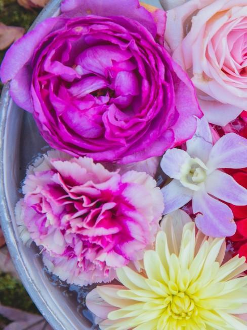 Blüten in Pink, Rosa und Gelb in Schale mit Wasser