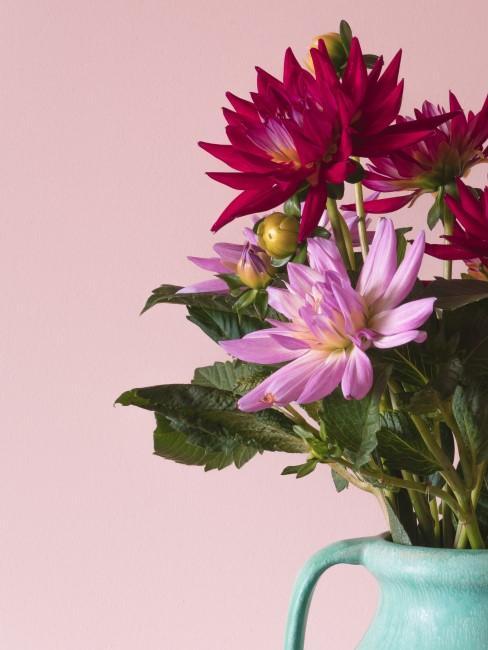 Blumen in Pinktönen