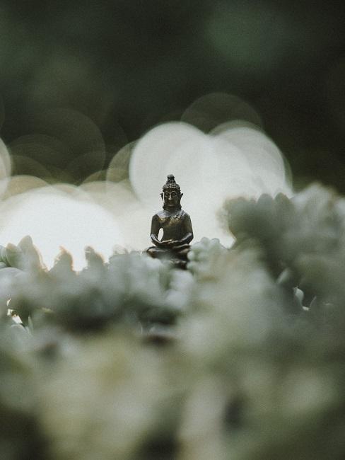 Buddha Figur im Grünen