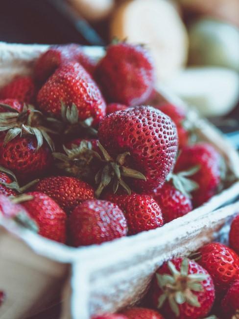 Erdbeeren anpflanzen auf dem Balkon