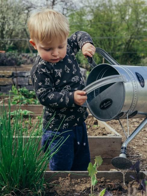 Kind gießt Pflanzen in einem Mini Hochbeet