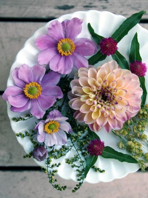 lila Blüten auf Teller arrangiert