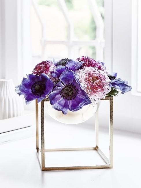 lila Anemonen in Vase