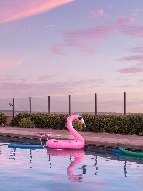 Pool mit rosa Flamingo bei Abenddämmerung