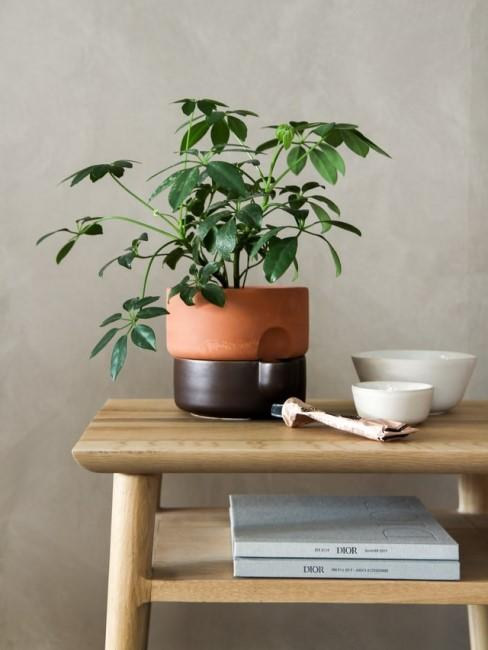 DIY-Nachttisch mit Pflanze