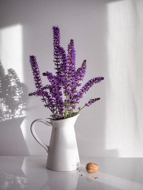 Lavendel in einem Gefäß auf einem weißen Tisch