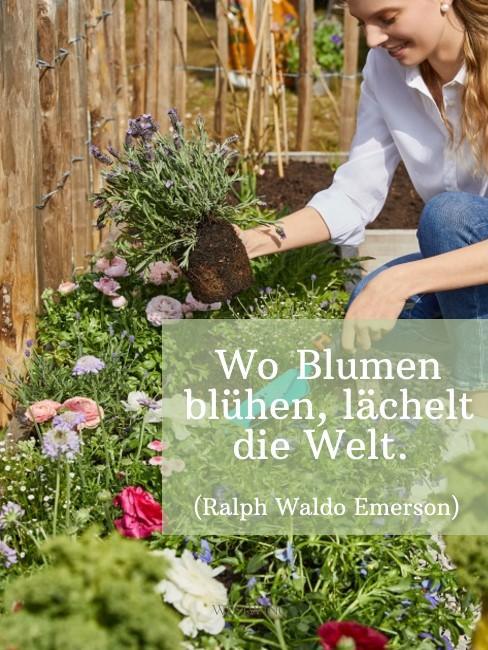 Blumenspruch Emerson