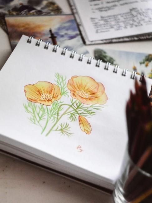 gezeichnetes Bild von orangen Blumen