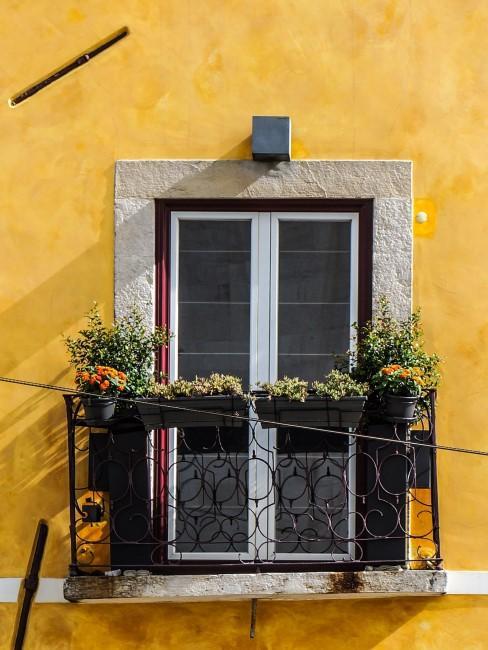 Balkon mit orangen Blumen