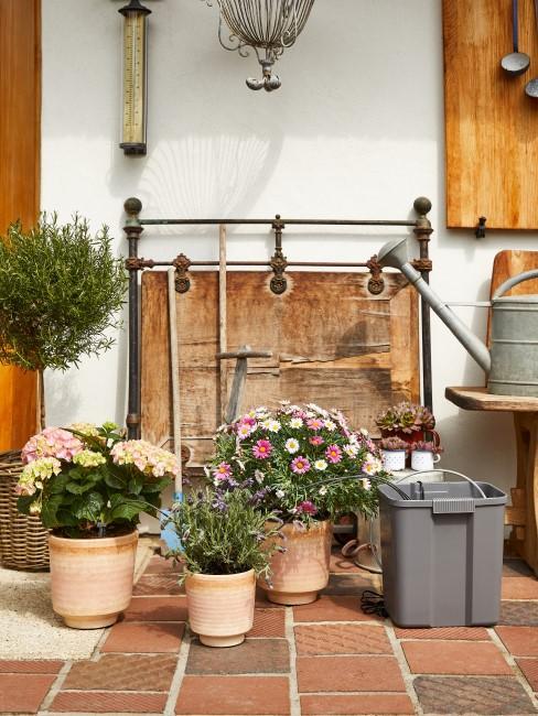 Wichtige Tipps zur richtigen Gartenpflege