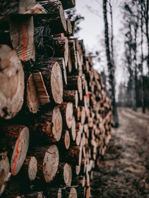 Brennholz vorbereiten