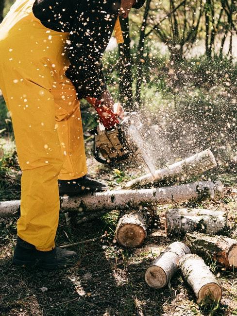 Schutzausrüstung zum Bäume fällen