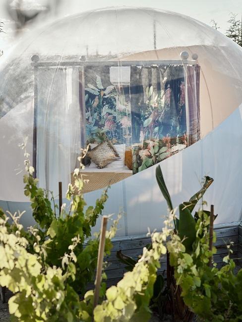 Jessica Schwarz Reves Etoiles Garden Eden Bubble Aussenansicht
