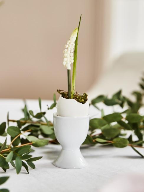 weiße Blume in einem Eierbecher als Tischdeko für Ostern