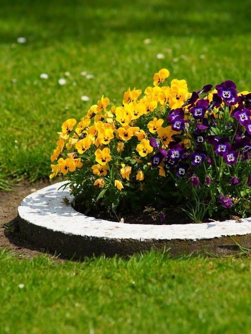 Ideen für ein rundes Blumenbeet im Garten
