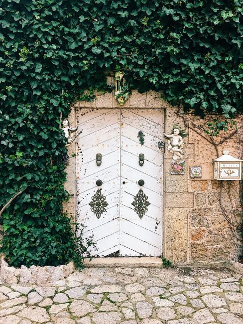Efeu an Hauswand mit Eingangstür