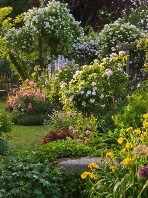 Gartenbepflanzung für einen schönen Garten