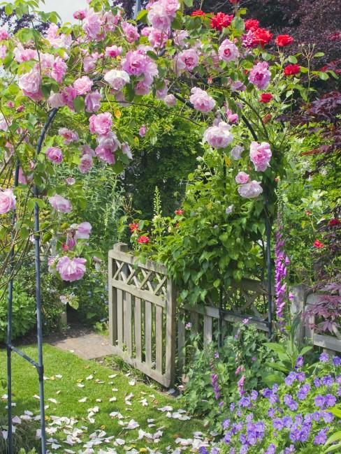 Rosenbogen im romantischen Garten
