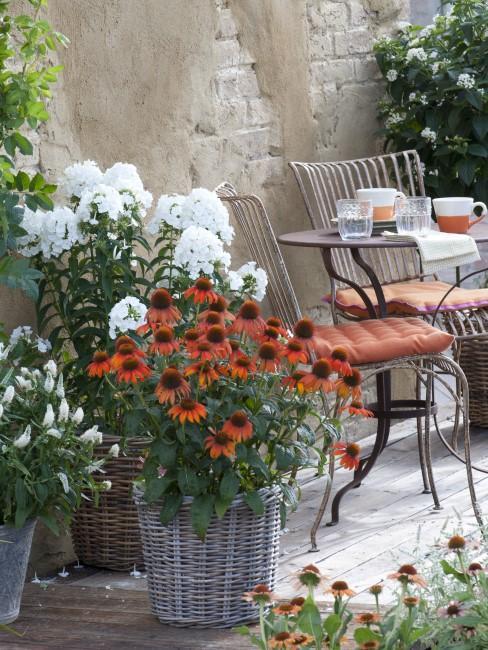 Terrasse bei der Gartenbepflanzung integrieren