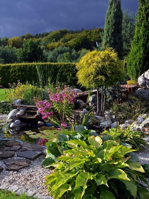 Steingarten anlegen und bepflanzen