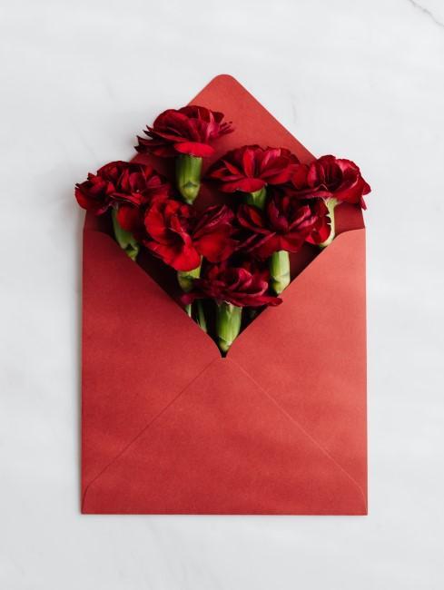 rote Nelken in Briefumschlag als Blumengruß