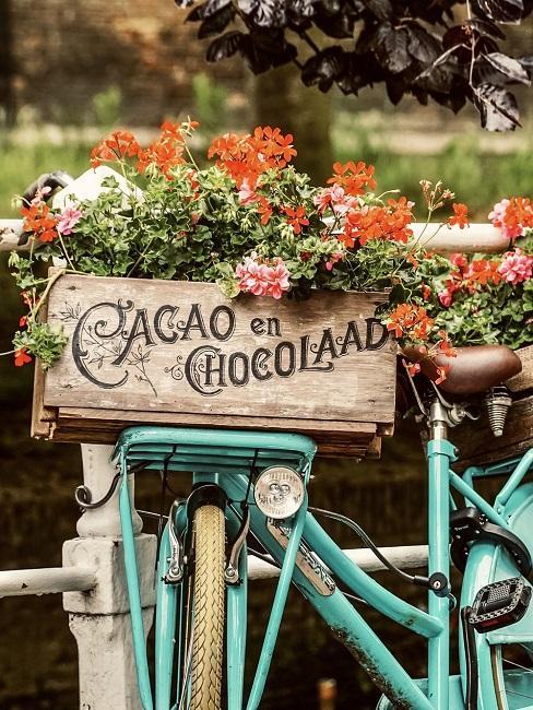 Geranien in einer Holzkiste auf einem Fahrrad